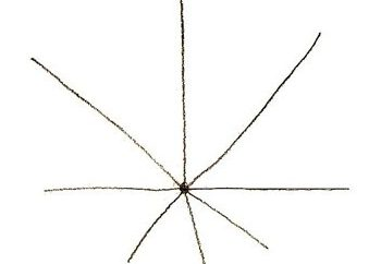 Jak narysować liść klonu z ołówkiem? Krok po kroku