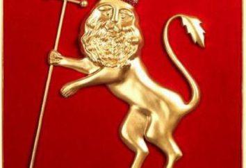 Escudo de armas de Vladimir – el símbolo de la historia antigua