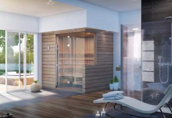 porta de vidro para um banho – a escolha certa