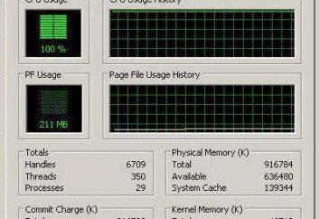 Carga de la CPU 100 por ciento. Lo que causa y la rectificación