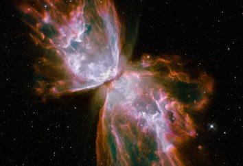 Ciò che ci dà le immagini di Hubble