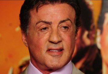 """Najsłynniejsze filmy z udziałem Sylvester Stallone: lista. Filmy z Stallone: """"Rocky 3"""", """"Rock-climber"""", """"The Expendables 2"""", """"Rambo: pierwsza krew"""""""