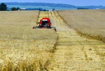 Agriculture Bélarus: particularités du développement
