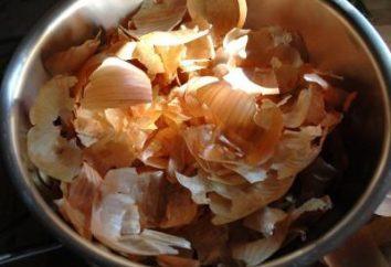 peau d'oignon comme engrais: la recherche d'alternatives