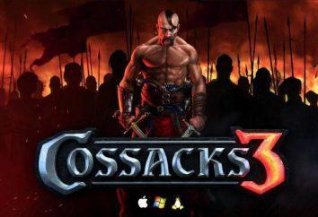 """""""Cossacks 3"""": eine Überprüfung des Spiels. Bewertungen, Anforderungen und Tipps"""