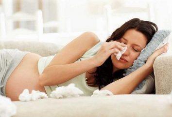 """Das Medikament """"Sinupret"""" während der Schwangerschaft: Indikationen und Verwendung"""