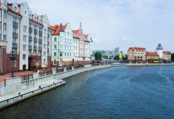 Kaliningrad Urlaub auf dem Meer. Ostsee, Kaliningrad