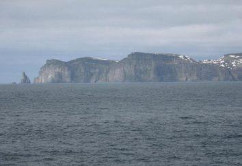 Bear Island (Norvège): description, photo