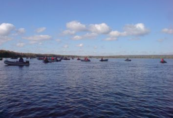 La pesca en la región de Pskov – ¿qué es?