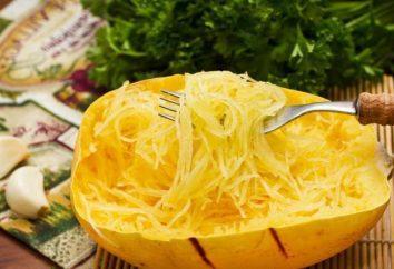 Calabaza (calabaza) – el más delicioso de calabaza: el cultivo. ¿Qué tan útil una calabaza para el cuerpo