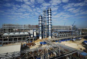 Las empresas industriales de la región de Moscú y Moscú. Lista de las principales compañías