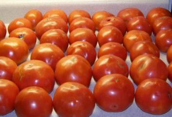 Jak zachować pomidory w oleju na zimę