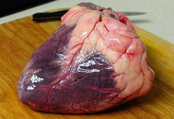 Goulash de carne coração: um passo a passo receita
