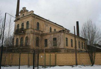 Mansion Vega George Ivanovich: história, descrição. Atrações São Petersburgo