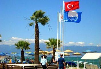 Bandiera turca – una falce di luna con una stella sulla bandiera rossa