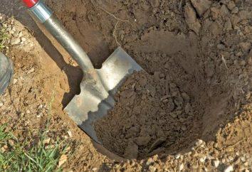 Che cosa significa in sogno a scavare? Sogno libro interpreterà