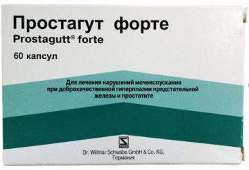 Le médicament « de forte Prostagut »: le guide des prix, des analogues et des commentaires