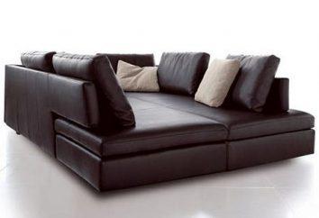 Canapé d'angle avec une grande couchette – la solution la plus concise