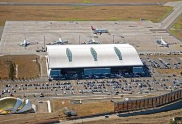 Aeroporto Air Harbor Tbilisi loro. Shota Rustaveli