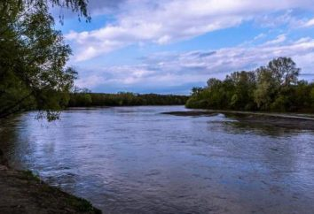 Główne dopływy rzeki Kubań: opis, nazwa i charakter