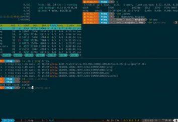 WGET-polecenie: przykładów. Program konsola do pobierania plików w sieci Wget