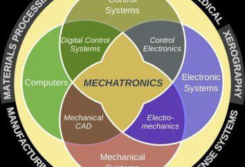 Mechatronika – co to jest? Podstawy mechatroniki. Mechatronika i Robotyka (specjalność): komu pracować?