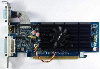 Karta GeForce wideo 210. specyfikacje, opinie i pozycjonowanie