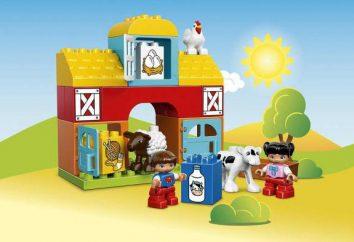 """Designer """"Lego Hollow: Farm"""". Descrição e Avaliações"""