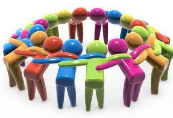 Struktura i zarządzanie narządów Ltd.