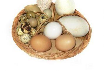 Pour savoir si une mère œufs de soins infirmiers?