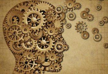 ¿Cómo recordar la información más rápido? entrenamiento de la memoria