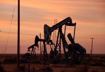 Olio e le sue implicazioni per l'economia mondiale
