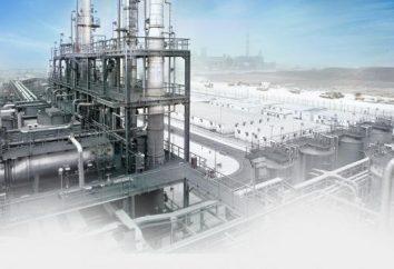 plano de acção sobre a segurança industrial: a amostra. controle de segurança industrial