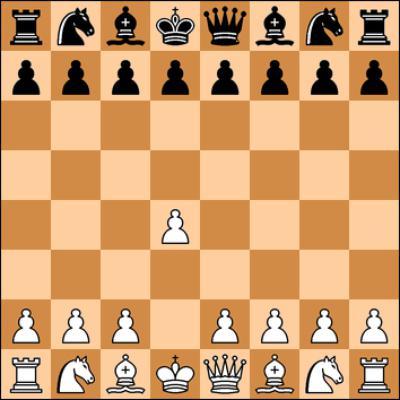 Schachregeln Pferd