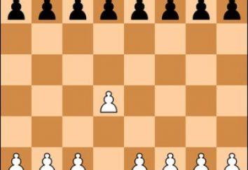Schachbegriffe und ihre Rolle im Leben der Schachspieler