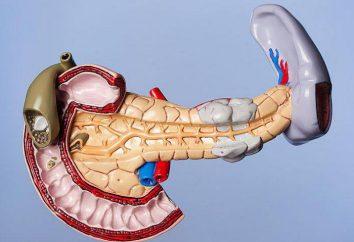 páncreas esteatosis: causas, síntomas y tratamiento