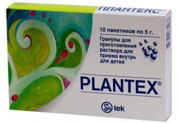 Plantex bébé: critiques et description du produit