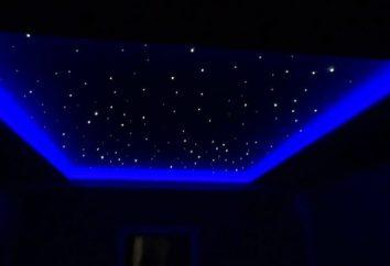 Faretti LED per controsoffitti (foto). l'installazione di auto