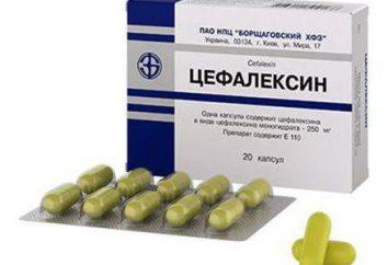 """Analog """"cephalexin"""" – eine Gebrauchsanweisung, Beratung bei der Auswahl"""