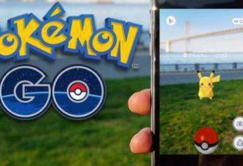 Il Pokémon più rari: dove trovarli e come per la cattura?