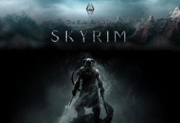 Iniciantes sobre a pessoa idosa enrola V: Skyrim. Como encontrar a salvar Skyrim, onde os arquivos de configuração e quão rápido para bombear o seu personagem.
