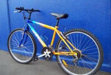 Bike «Challenger» – qualité à un prix raisonnable