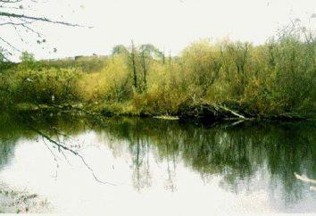 río Techa en la región de Chelyabinsk