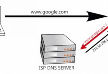 Co zrobić, jeśli serwer DNS nie odpowiada, i jak można to naprawić?
