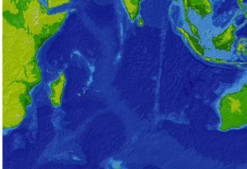 Océan Indien: la profondeur de l'océan. Le fond de l'océan Indien. La température et le relief de l'océan Indien