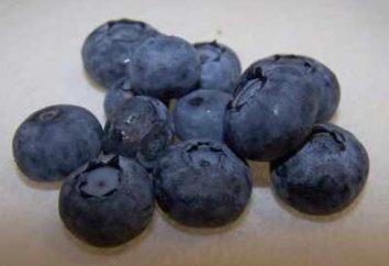 confiture aux bleuets – savoureux régal
