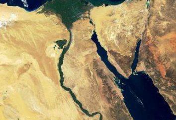 Sinai-Wüste: Beschreibung, Gebiet, interessante Fakten