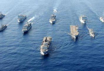 Dzień Marynarki Wojennej: data świąteczna