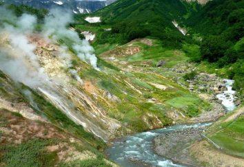 Dove si trova il fiume Kamchatka? Kamchatka River: descrizione, fonte, la bocca, la natura, flora e fauna