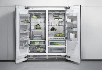Como escolher uma boa geladeira barata? Onde estão os frigoríficos mais baratos?